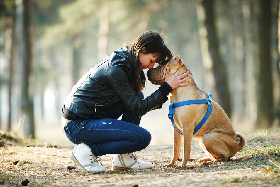 Picture of woman and dog in the park