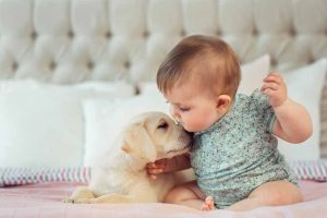 Picture of a baby petting a dog