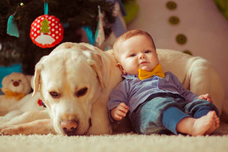 Picture of a baby laying against a dog