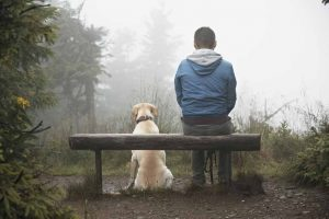 Picture of dog sitting by a man on a bench