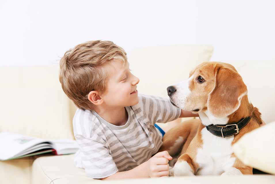 Picture of a boy and his Beagle