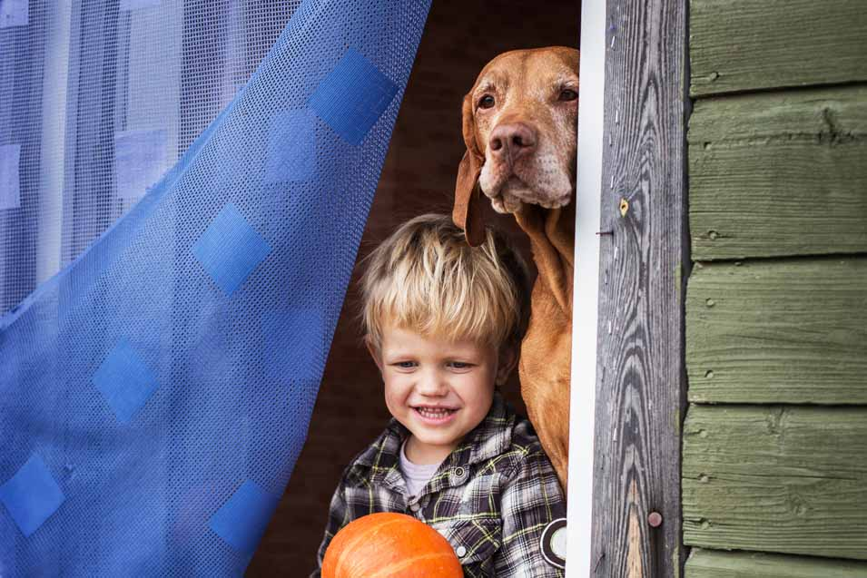 Picture of a boy and a Vizsla at home
