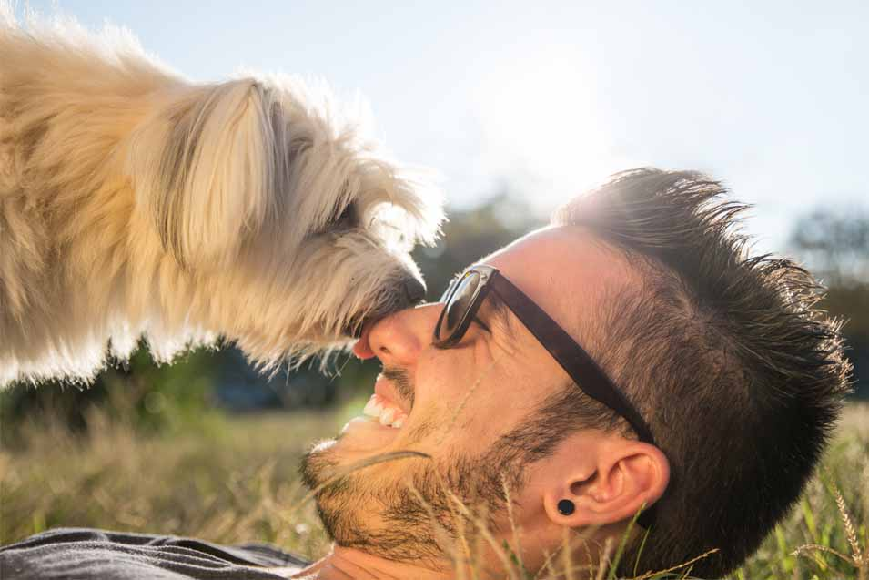 Picture of a dog licking a mans face outside