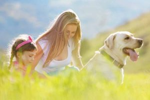 Picture of a family in a field with a dog