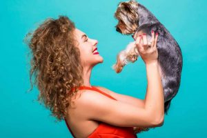 Finding a Pet Friendly House or Apartment to Rent