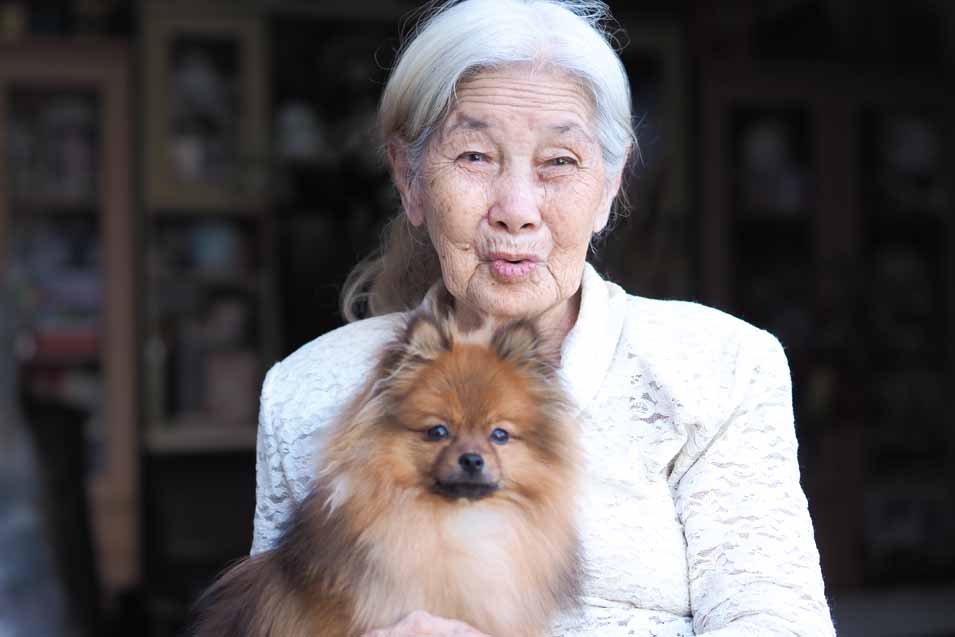 Picture of dog sitting with a woman