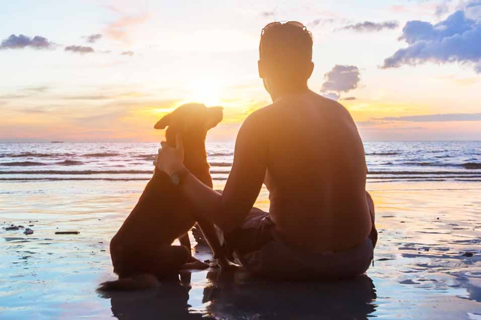 Picture of a man sitting with a dog on the beach