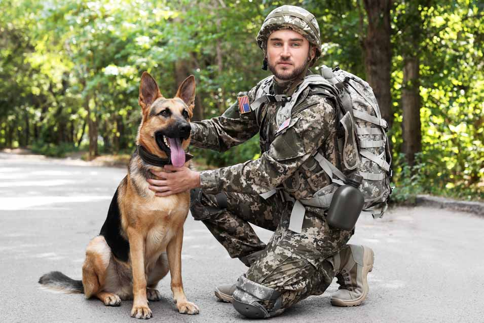 Picture of a solider and his dog