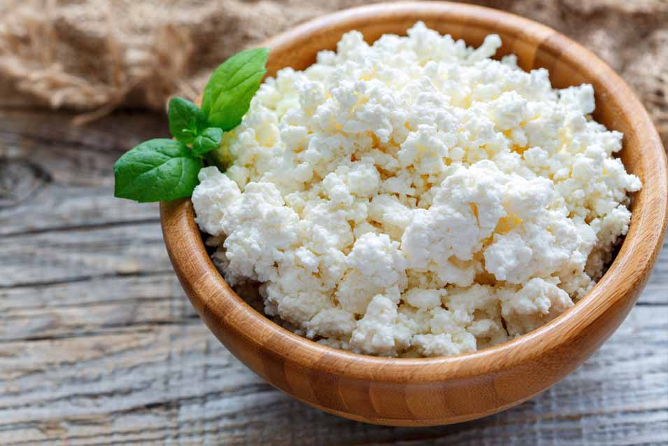 Picture of cottage cheese