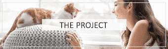 The Project Header