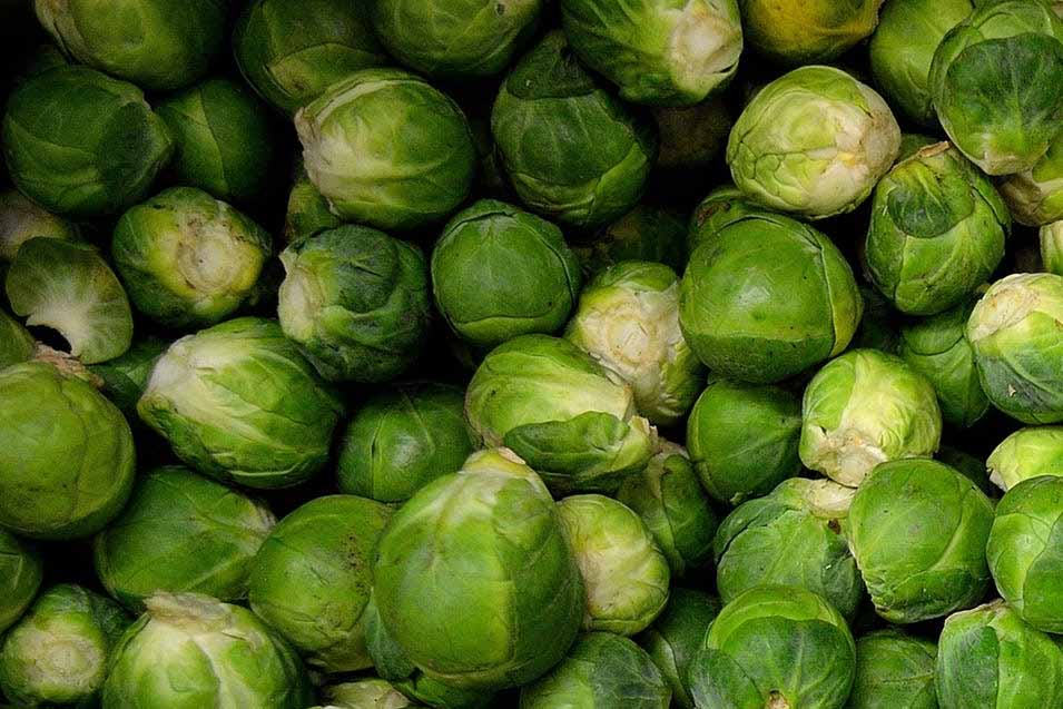 Picture of a bunch of brussels sprouts