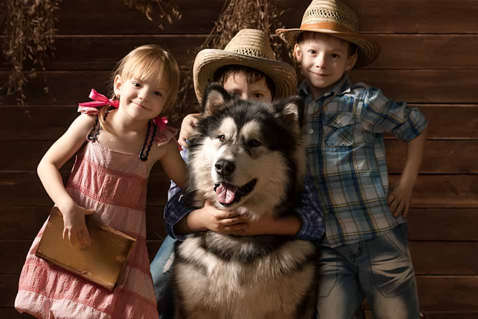 Picture of country dog in barn with children