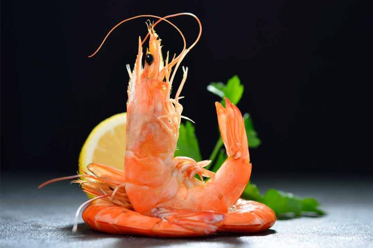 Picture of a cooked prawn